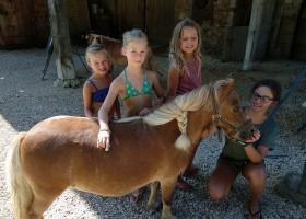 Domaine Ramonjavel in de Lot et Garonne, Frankrijk pony (16) Domaine Ramonjavel 30pluskids