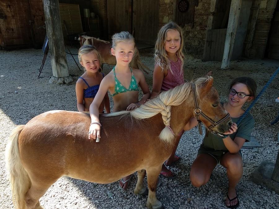 Domaine Ramonjavel in de Lot et Garonne, Frankrijk pony (16) Domaine Ramonjavel 30pluskids image gallery