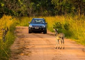 3041_3.jpg Local Hero Travel in Zuid-Afrika 30pluskids