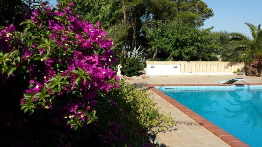 Al Gelsomoro in Apulie, Italie zwembad 2 Al Gelsomoro 30pluskids image gallery