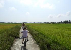 Travelnauts rondreis Vietnam 07 Zeilen, rijstvelden en markten in Vietnam met kinderen 30pluskids