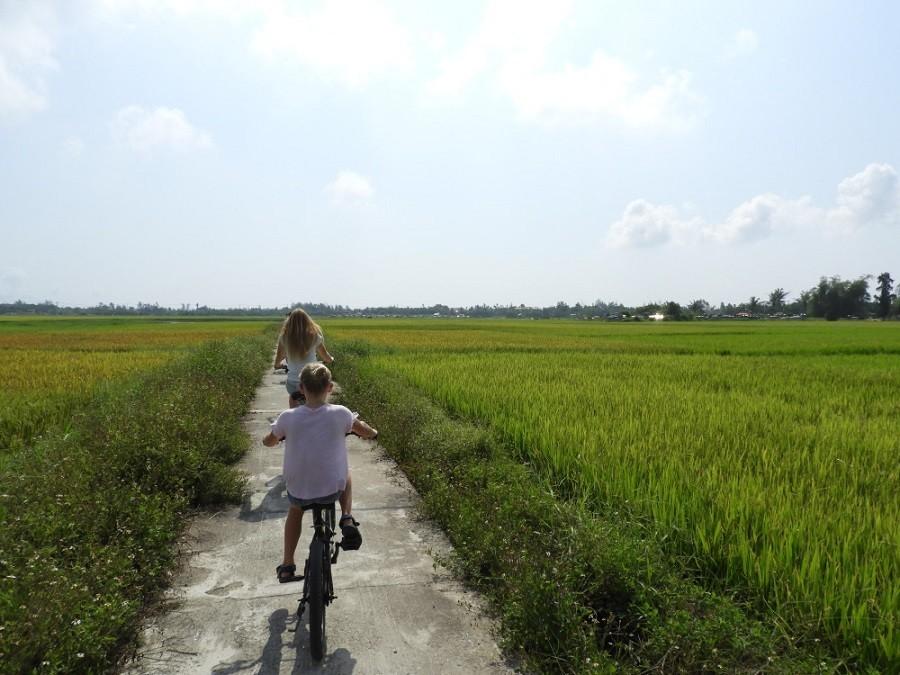 Travelnauts rondreis Vietnam 07 Zeilen, rijstvelden en markten in Vietnam met kinderen 30pluskids image gallery