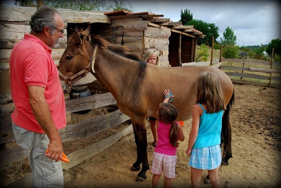 Quinta Antes o Vento in Portugal paard verzorgen Quinta Antes o Vento 30pluskids image gallery