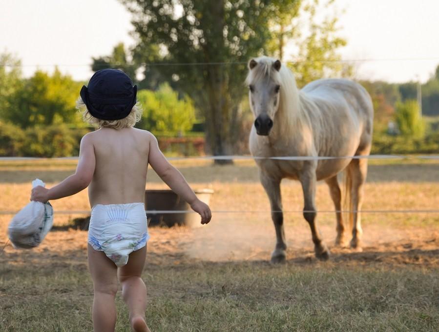 """Domaine Les Gazailles Huis aan de Lot in de Lot-et-Garonne, Frankrijk kindje en paard Domaine """"La Gazailles"""" - HUIS aan de LOT 30pluskids image gallery"""
