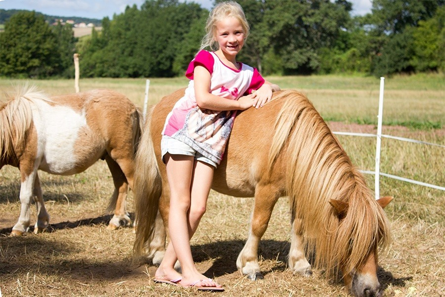 Domaine des Lilas in de Auvergne, Frankrijk pony's Domaine des Lilas 30pluskids image gallery