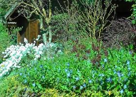 Les Aulnettes tuin.jpg Les Aulnettes 30pluskids
