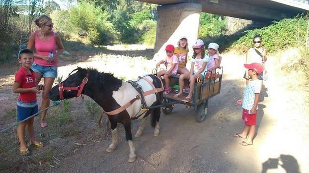 Nido Aguila Blanca pony.jpg Nido Aguila Blanca 30pluskids image gallery