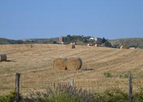Domaine en Birbes in Laurac, Frankrijk uitzicht op velden en laurac Domaine en Birbès 30pluskids