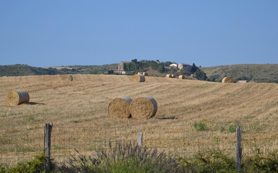 Domaine en Birbes in Laurac, Frankrijk uitzicht op velden en laurac Domaine en Birbès 30pluskids image gallery