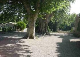 Domaine les Platanes in Zuid-Frankrijk buitencour platanen Domaine Les Platanes 30pluskids