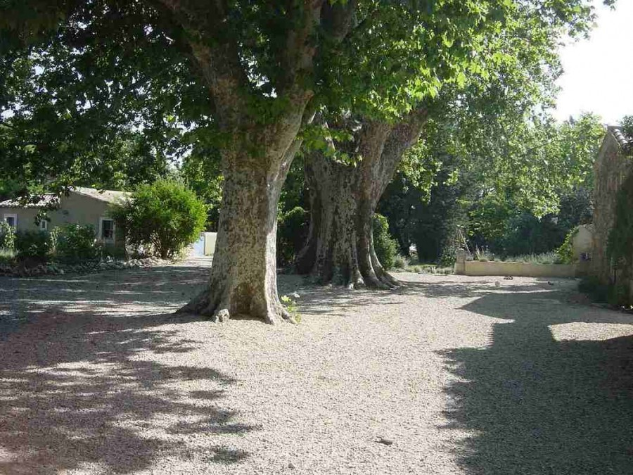 Domaine les Platanes in Zuid-Frankrijk buitencour platanen Domaine Les Platanes 30pluskids image gallery