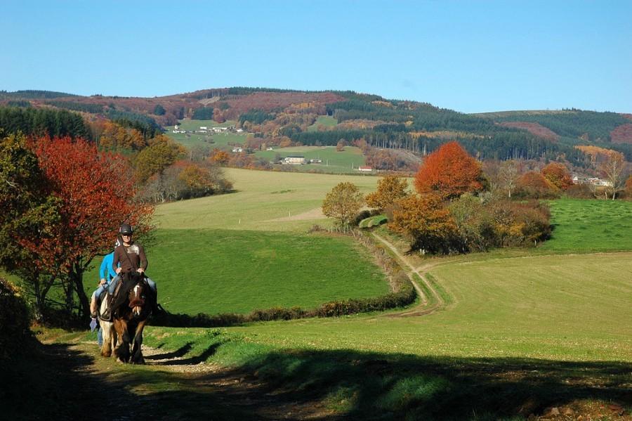 Morvan Rustique paardrijden herfst klein.jpg Morvan Rustique 30pluskids image gallery