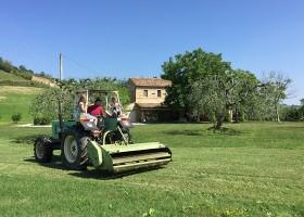 villadellavalle in Le Marche, Italie tractor Villa della Valle 30pluskids