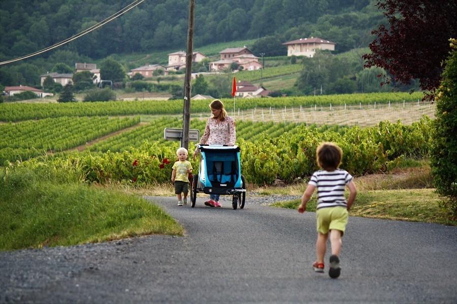 Domaine Lachat in Regnie-Durette, Frankrijk wandelen tussen wijngaarden Domaine Lachat 30pluskids image gallery