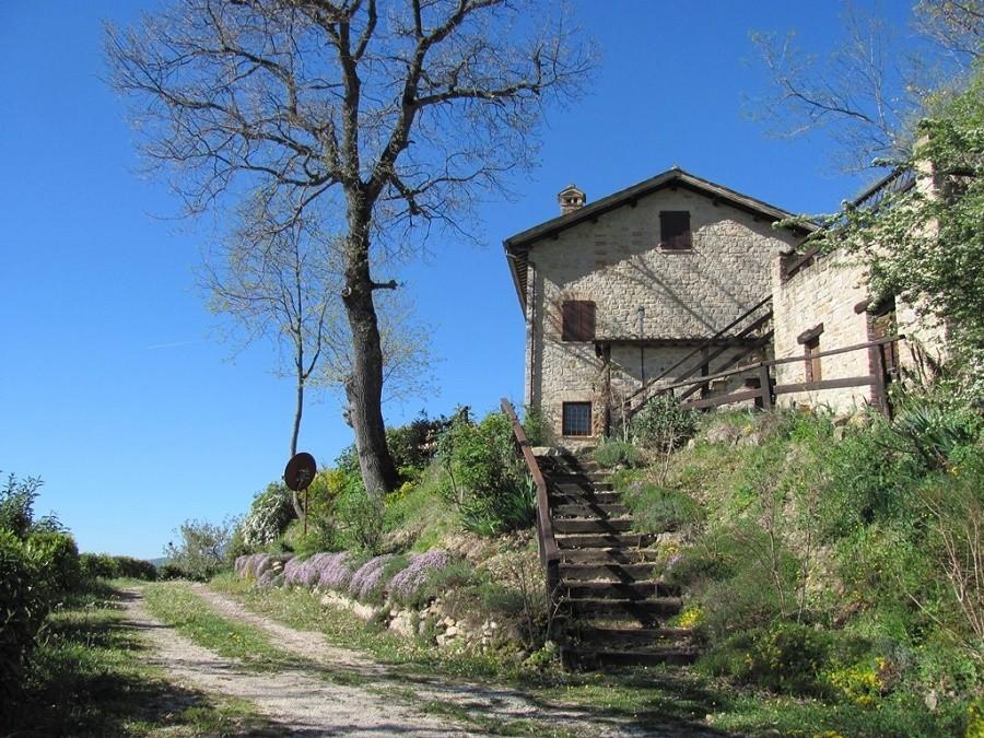 Vivere e Gustare in Le Marche, Italie trap naar huis Vivere e Gustare 30pluskids image gallery