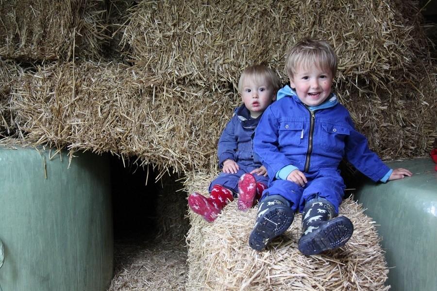 Landrijk De Reesprong in Twente, Nederland kleine kinderen in het hooi