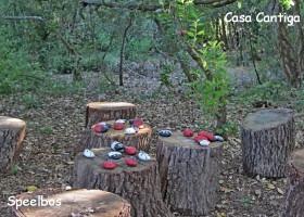Casa Cantiga Portugal speelbos Casa Cantiga 30pluskids