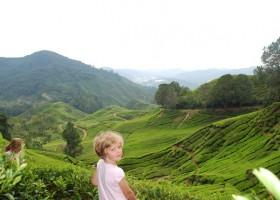 742_1.jpg KidsReizen - Explore Maleisië 30pluskids