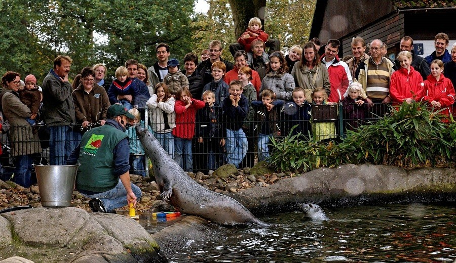 Droste's Boerderijlodges in Twente, Nederland dierentuin Nordhorn