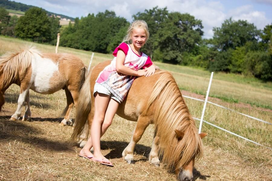Domaine des Lilas in Saint Germain Lembron, Frankrijk pony's Domaine des Lilas 30pluskids image gallery