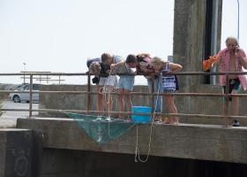 Au Passage du Gois in de Vendee, Frankrijk vissen met een kruisnet Au Passage du Gois 30pluskids