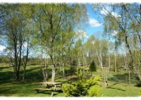Sweet Stuga Skane tuin+MB+voorjaar.jpg Sweet Stuga Skåne 30pluskids