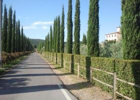 Tritt Case in Toscana Vista Verde Relais 4 Vista Verde Relais 30pluskids