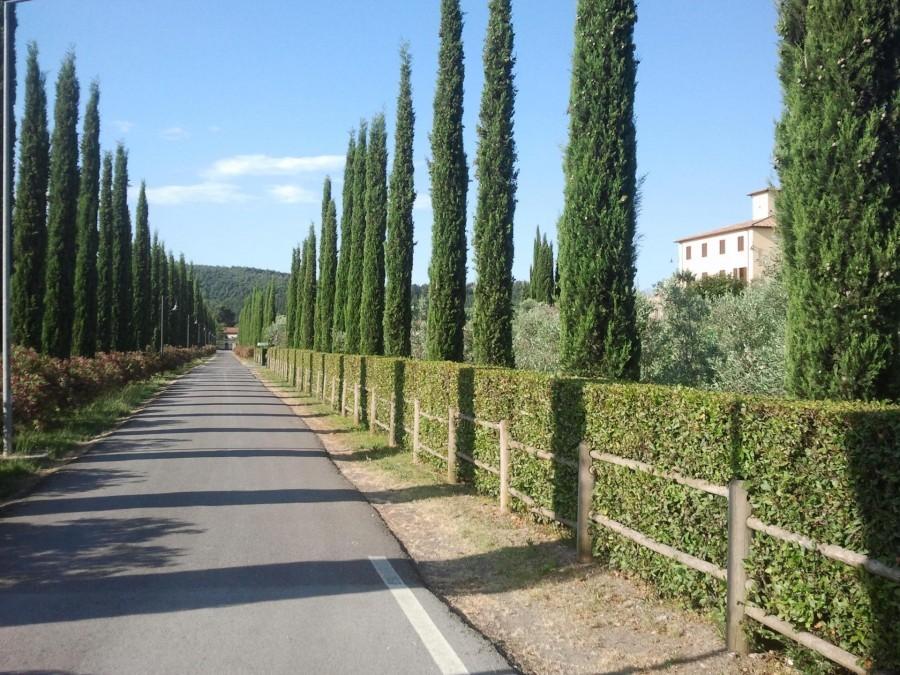 Tritt Case in Toscana Vista Verde Relais 4 Vista Verde Relais 30pluskids image gallery