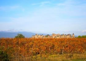 Domaine de la Bade Carcassonne klein.jpg Domaine de la Bade 30pluskids