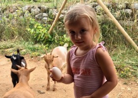 Quinta Vida Verde in Leiria, Portugal 9 eitje rapen Quinta Vida Verde 30pluskids