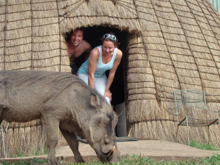 3041_1.jpg Local Hero Travel in Zuid-Afrika 30pluskids image gallery