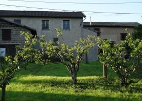 Domaine Lachat in Regnie-Durette, Frankrijk wijngaard Domaine Lachat 30pluskids