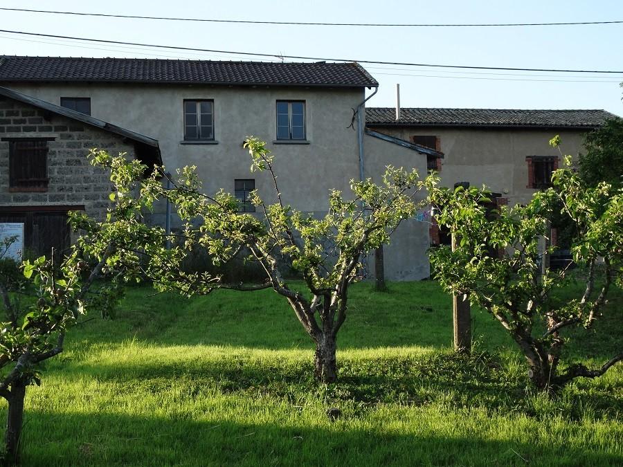 Domaine Lachat in Regnie-Durette, Frankrijk wijngaard Domaine Lachat 30pluskids image gallery