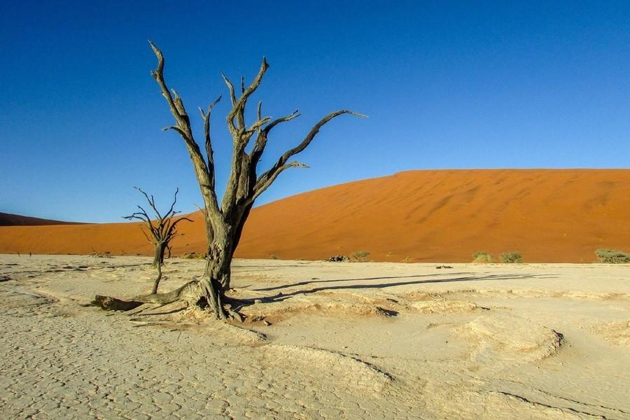 Travelnauts Namibië - Dodevlei Travelnauts 30pluskids image gallery