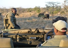 Travelnauts Zuid-Afrika - Safari x Travelnauts Zuid-Afrika 30pluskids