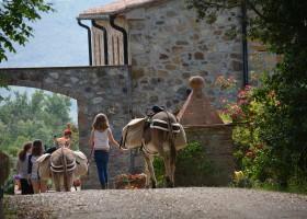 Altratoscana in Toscane, Italie met ezels bij mooi huis Altratoscana 30pluskids