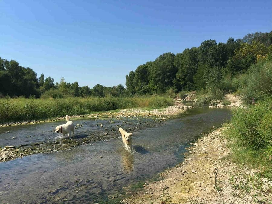 Rendez-vous in Roaix, Frankrijk honden Vakantieverblijf Rendez-Vous 30pluskids image gallery