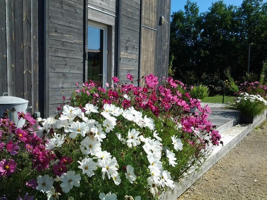 Les Terrasses in de Lot et Garonne, Frankrijk bloemen buiten Les Terrasses 30pluskids image gallery