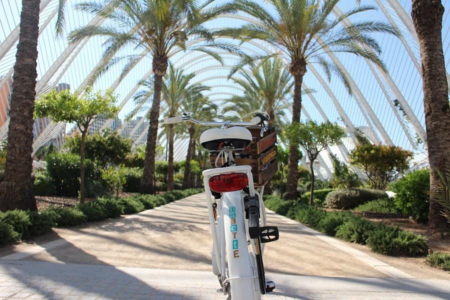 Stedentrip Valencia fietsen door het Turia park