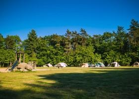 Vlintenholt in Drenthe, Nederland kampeerveld 't Vlintenholt 30pluskids