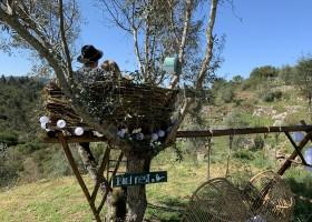 Quinta Vida Verde in Macieira Almoster, Portugal birdnest romantic Quinta Vida Verde 30pluskids