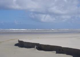 Waddenrust strand.jpg Vakantiehuisjes Waddenrust  30pluskids
