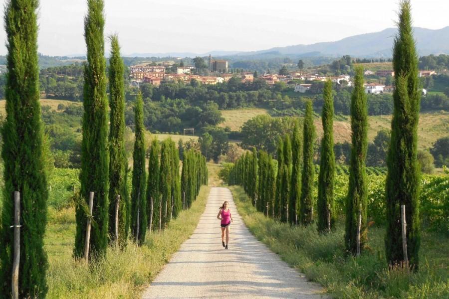 Partingoli B&B omgeving.jpg Partingoli - kindvriendelijk  vakantie vieren in Toscane 30pluskids image gallery