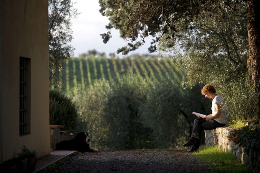 Partingoli uitzicht op wijngaard.jpg Partingoli - kindvriendelijk  vakantie vieren in Toscane 30pluskids image gallery