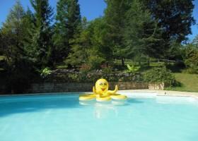 Domaine La Douce France in de Gers, Midi-Pyrenees, Frankrijk zwembad 15 Domaine la Douce France 30pluskids