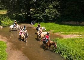 Camping Vallee de Lignac in Lignac, Frankrijk Ponyrijden in de Brenne Camping Vallée de Lignac 30pluskids