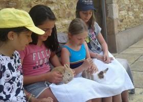 Bonneblond in de Auvergne, Frankrijk kinderen met konijntjes Landgoed Bonneblond 30pluskids