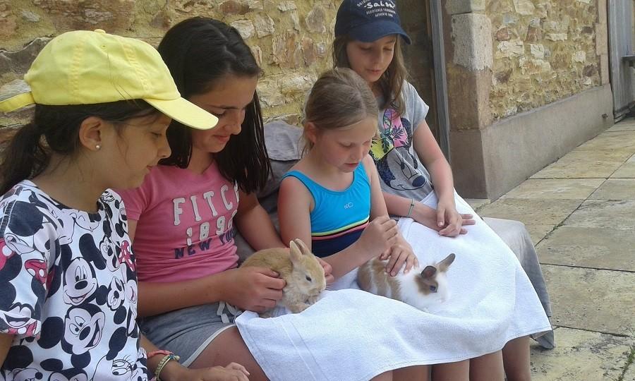 Bonneblond in de Auvergne, Frankrijk kinderen met konijntjes Landgoed Bonneblond 30pluskids image gallery