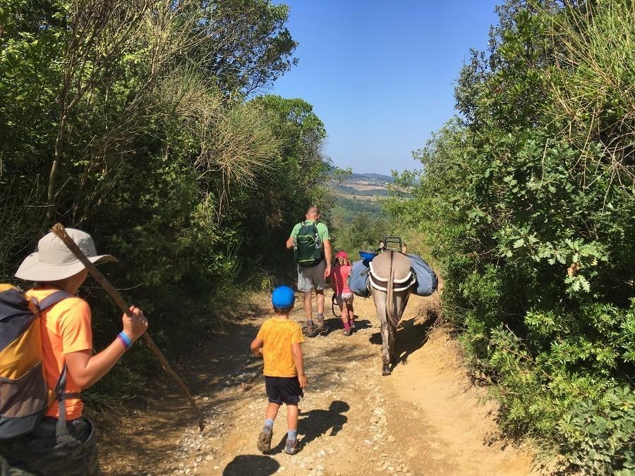 Altratoscana in Toscane, Italie gezin met ezel op pad Altratoscana 30pluskids image gallery