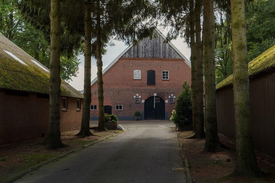 Landrijk De Reesprong in Twente, Nederland boerderij Landrijk de Reesprong 30pluskids image gallery